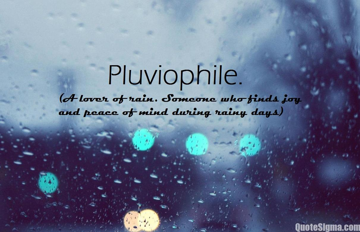 rain quotes and sayings - photo #8