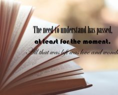 novel quotes